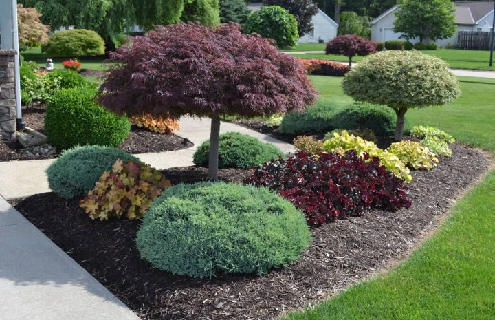 Best Landscaping Ideas And Designs